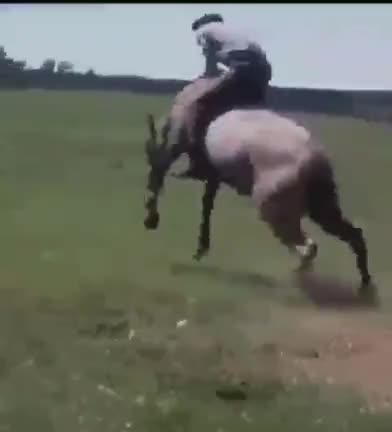 A 360 on the horse's back
