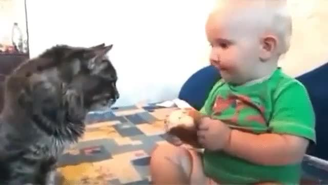 ⁣Boy shares his food with his cat