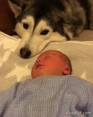 I will protect you now and always little human...