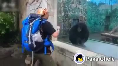 ⁣Is that dude climbing Everest after stopping by the zoo?