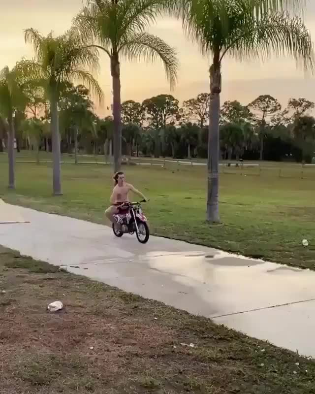 meanwhile in ⁣Florida