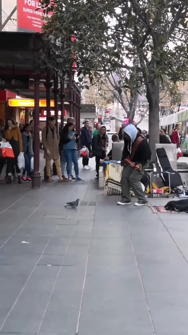 ⁣pigeon dancing along to blurred lines