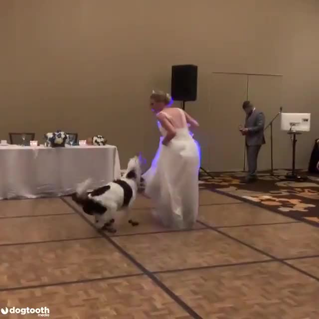 ⁣The first dance!
