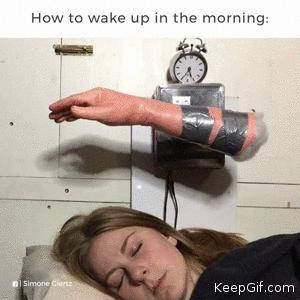 How to wake up in the morning 😂