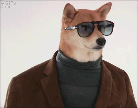 when you buy some DogeCoin