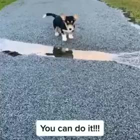 ⁣You can do it!
